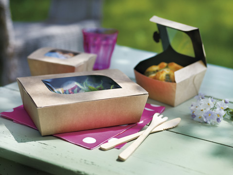 Disposable Takeout Food Packaging